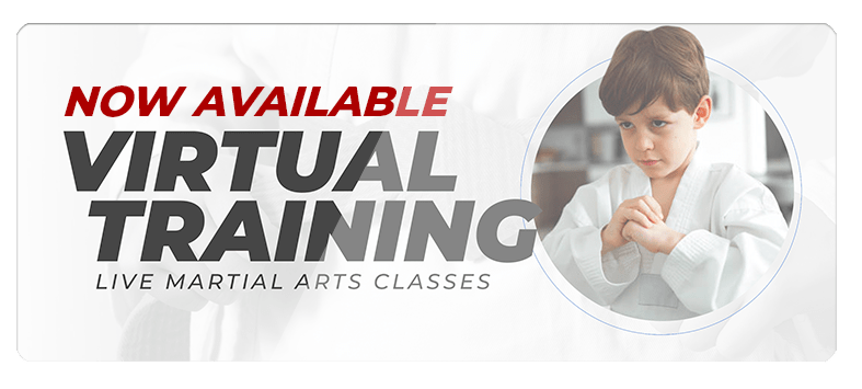 VIRTUALPOPUPSPARK.1.1, Next Level Martial Arts of Houma